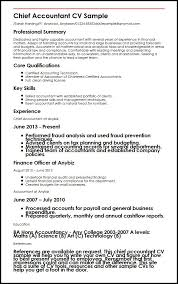 Chief Accountant CV Sample