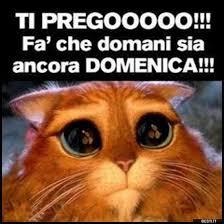Risultati immagini per vignette divertenti italia