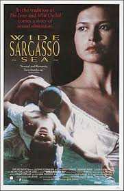 wide sargasso sea aesthetic and interpretive understanding  movie