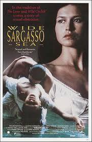 wide sargasso sea aesthetic and interpretive understanding  movie