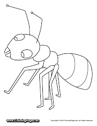 Ant Coloring Pages - GetColoringPages.com