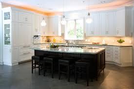 Kitchen Design Certification Euro Kitchen Cabinets Design Porter