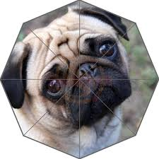 2018 friend birthday gift good quality umbrella cute and funny pug dog paen12 for kids portable foldable umbrellas outdoor umbrella from anzhuhua
