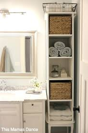 Tall Bathroom Storage Cabinet youresomummycom