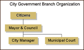 City Manager How The City Works