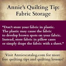 20 best Free Quilting Tips & Videos images on Pinterest | Quilting ... & Free Fabric Storage Quilting Tip from Annie's -- Visit Anniescatalog.com  for more free Adamdwight.com