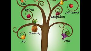 children s daily story gifts and fruit of the holy spirit galatians dec 24 2 fish talks