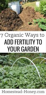 best soil for vegetable garden. 818 best soil \u0026 amendments images on pinterest | garden 7 organic ways to add fertility your for vegetable