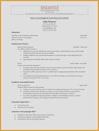 Simple Resume Samples American Resume Format Resume Example