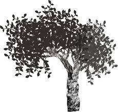 かっこいい幹の白い木の無料イラスト81491 素材good