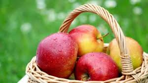 green and red apples in basket. beautiful red apples in a basket, the midst of green and basket