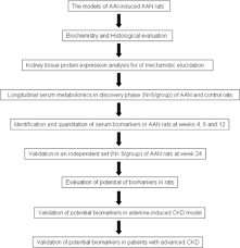 Metabolomics Insights Into Activated Redox Signaling And