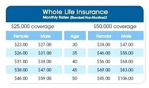 Aarp Insurance Quote Cool Aarp Life Insurance Quote 48 Senior Car Insurance Quotes