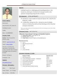 Create Visual Resumenline Free Professional Make Printable For India