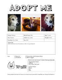 Dog Flyer Template Free Adopt A Pet Flyer Omfar Mcpgroup Co