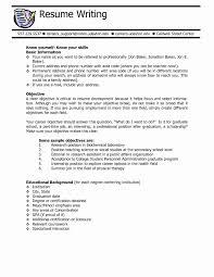 Excellent Resume Cover Letter For Restaurant Server In Resume