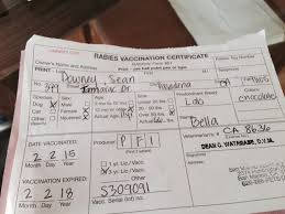 rabies vaccination certificate buddy passport robbie