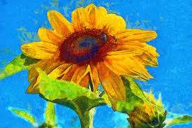 vincent van gogh style sunflowers alfred