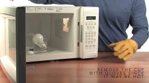Appliance Light Bulb Microwave Microwave Light Bulb Sick Science Experiments Steve