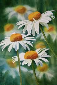 three wild daisies painting three wild daisies fine art print