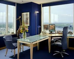 how to decorate my office. Ideas For Decorating Your Office At Work Pictures Professional Decor How To Decorate My E