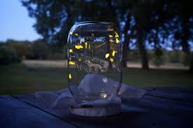 lighting in a jar. Fireflies-in-a-jar-tumblr Lighting In A Jar