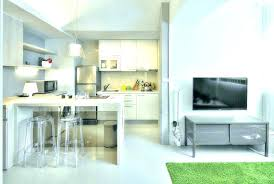 Kitchen Design For Apartments Interesting Gorgeous Studio Apartment Kitchen Ideas Apartments Small Studio