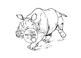 25 Real Animal Coloring Pages Rhinoceros Real Animals Coloring