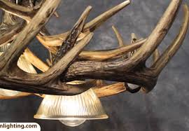 top 78 unbeatable impressive antler chandelier lighting kit enthrall beautiful chandeliers and company bewitch pleasant shell