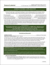 C Level Executive Resume Example Distinctive Documents