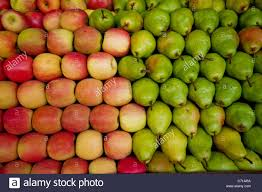 green and red apples. red apples and green pears lay in a pile at fruit stand maryland, usa.