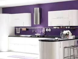 kitchen design purple and white. white kitchen with purple walls design and