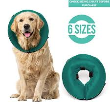 Apparel Accessories Hats Pet Cute Comfy Cone Pet Dog
