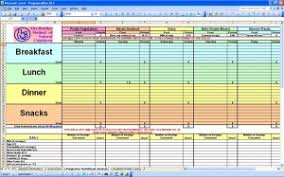 diet spreadsheet excel journal template