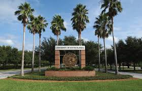 top online bachelor s degree programs in healthcare management  university of south florida online bachelor s