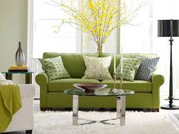 Fantastic Green Living Room with Green Two Seater Couch Cushions on White  Fur Rug also Glass