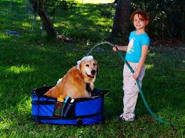 field dog 1st aid trauma kit
