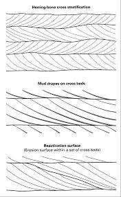 tidal environments tidal environments