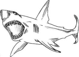 Small Picture Drawn shark coloring page Pencil and in color drawn shark