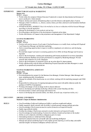 Marketing Experience Resume Sales Marketing Resume Samples Velvet Jobs
