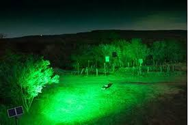 Hog Light The Worlds Greatest Led Fishing And Hunting Light The Spark The Fish And Hog Killer Sports 20 000 Lumens Of Spotted Green Light The Light Is