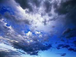 Image result for wild blue yonder