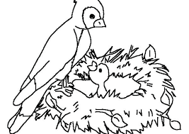 Coloring Pages Printable Bird Coloring Pages Page Big Of Birds