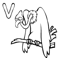 Small Picture Animal Alphabet Coloring Pages Vulture Free Alphabet Coloring