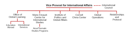 Student Life Org Chart About International Affairs
