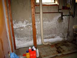 a basement wall covered in a white flaky mineral salt known as efflorescence