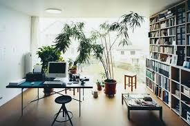 modern office plants. Contemporary Indoor Plants Modern Classic Workspace With Private Library And Uk . Office