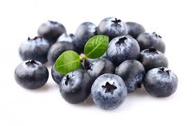 藍莓的圖片搜尋結果
