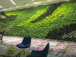 interior landscaping office. Plant_interscapes-embassy_suites-amarillo-gsky-green_living_wall Interior Landscaping Office S