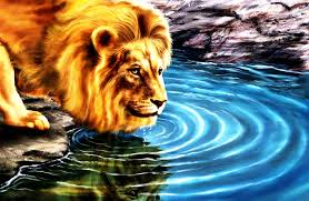 3d lion wallpapers free download. Contemporary Download Beautiful Lion Wallpaper 746188 In 3d Lion Wallpapers Free Download D